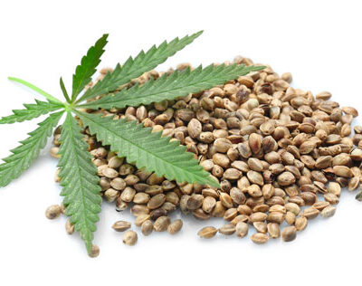 What to Consider When Buying Weed Seeds